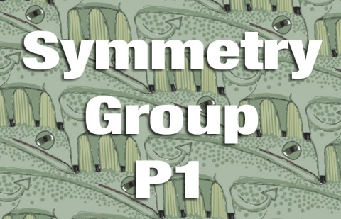 Symmetry Group P1 Explained