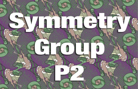Symmetry Group P2 Explained