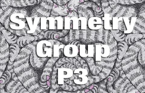 Symmetry Group P3 Explained