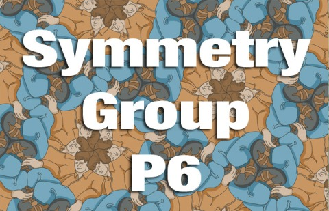 Symmetry Group P6 Explained