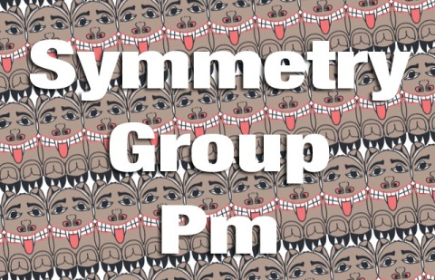Symmetry Group Pm Explained