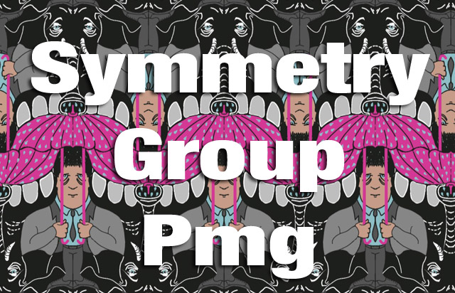 Symmetry Group Pmg