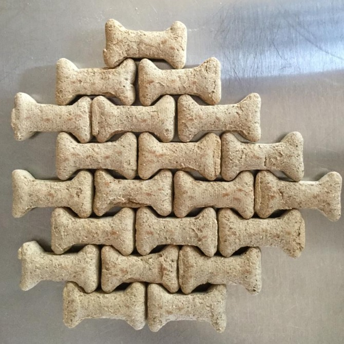 dog-cookie-tessellation